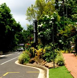 Cairns-botanical-garden-1