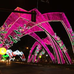 Lunar New Year lights