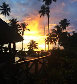 Return-to-Paradise-blog1