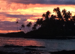 Return-to-Paradise-blog2